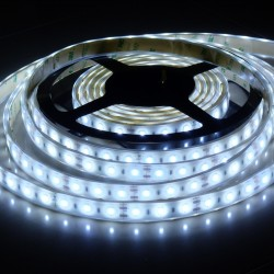 LS 60LED SMD5630 14W 1500Lm Cold White 12V IP68 (Silicon tube with glue)